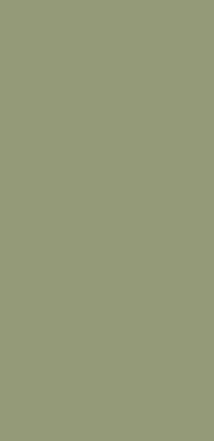 YDH384 克罗地亚绿